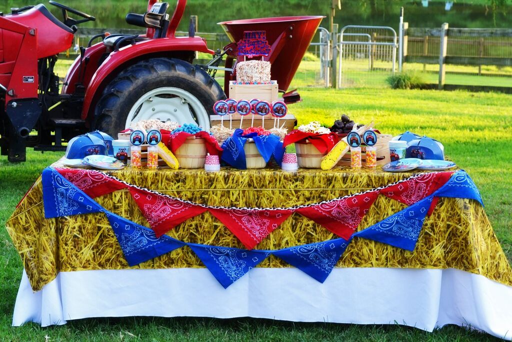 Farm Tractor Party Table Design