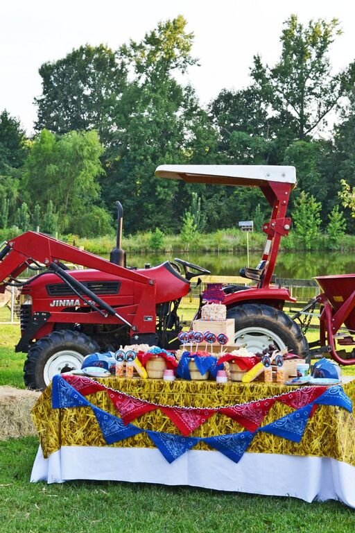Farm Tractor Table Set-Up