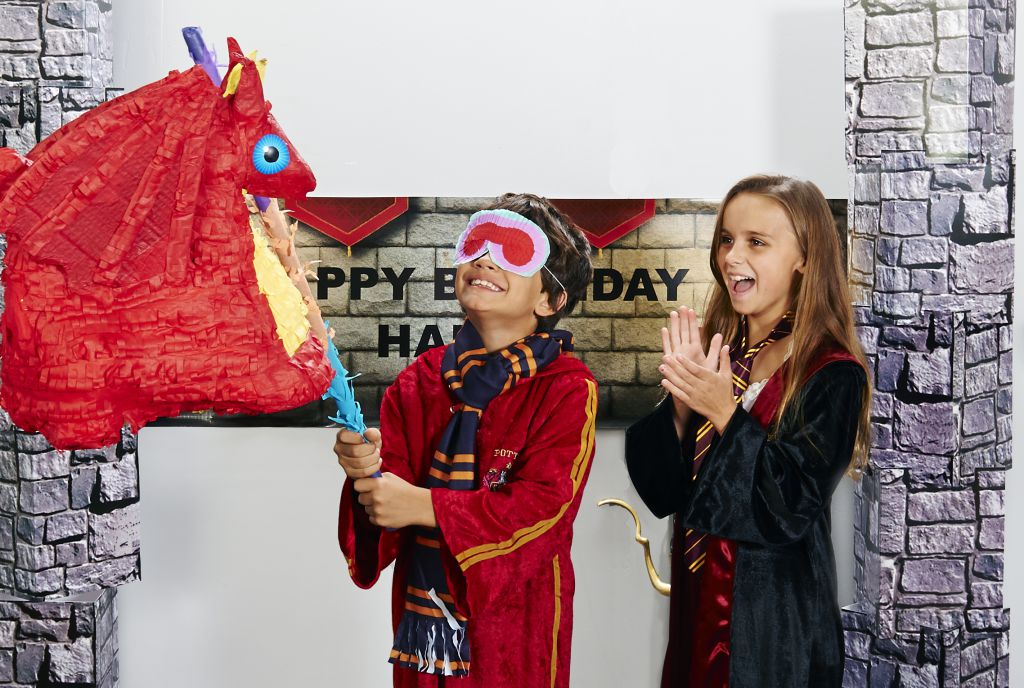 Harry Potter Party_pinata (1)